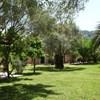 Anthias Garden