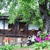Dzhelepova Guest House