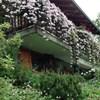Il Giardino Dell'Artemisia