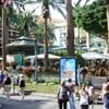 Holiday In Plaza Del Charco