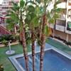 Apartment Mediterranea II Torrevieja