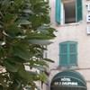 Hotel Trois Dauphins