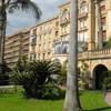 Les Palmiers de Cannes