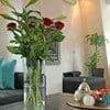 "Apartment ""Trendy"" Alkmaar"
