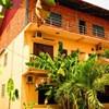 Urban Jungle Hostel