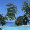 Bay Villa 12