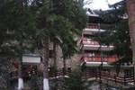 Отель Bradul Hotel