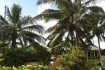 Отель Tradewinds Resort