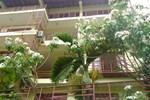 Отель Nature Walk Resort