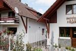 Гостевой дом Pension Stejeris