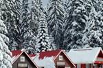 Вилла Ski Chalet Borovets