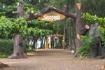 Отель Sao Mai Resort