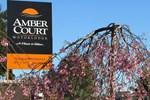 Отель Amber Court Motor Lodge