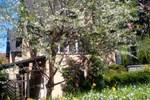 Гостевой дом Pension Colina
