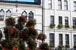 Отель Cardiff Sandringham Hotel
