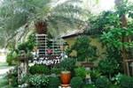 Отель Pawida Resort