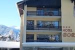 Отель Hotel Bor