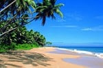 Хостел Colombo Airport Hostel @ Negombo Beach