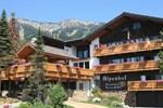 Отель The Alpenhof