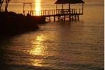 Отель Tara Beach Resort