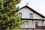 Отель Alpina Hotel