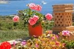 Апартаменты Mediterranea Gozo