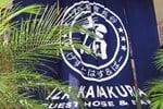 Хостел IZA Kamakura Guest House and Bar