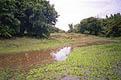 Автостопом через Африку: от реки Волги до реки Оранжевой. Глава 20. Замбия. Часть вторая - фотографии из Замбии - Travel.ru