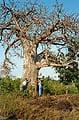 Занзибар. Земля чёрных людей - фотографии из Танзании - Travel.ru