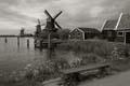 Путевые заметки про Голландию - фотографии из Нидерландов - Travel.ru