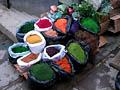 Кактусы в цвету - фотографии из Боливии - Travel.ru