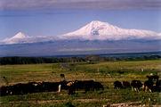 гора Арарат / Армения