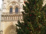 Рождественская елка в Париже