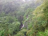 водопад Грин-Хилл Фоллс / Тринидад и Тобаго