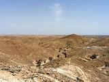 Местные пейзажи / Фото из Туниса