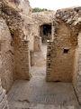 Дугга. Напольная мозаика / Фото из Туниса