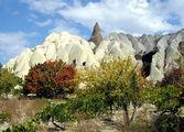Красно-желтый октябрьский день / Фото из Турции