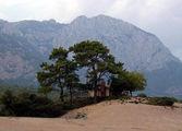 Домик, сосны и горы / Фото из Турции