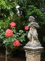 Остров Лопуд. Амурчик среди розанов / Фото из Хорватии