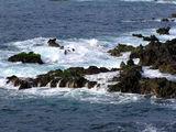 Скалистый пляж Пуэрто-де-ла-Круса / Фото из Испании