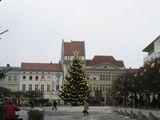 Главная площадь Старого города в рождественском наряде / Фото из Германии
