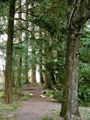 Парк / Фото из Лесото