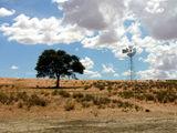 Ветряк / Фото из ЮАР