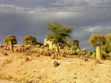 Национальный парк Ауграбис / Фото из ЮАР