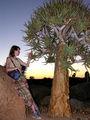 На фоне древовидного алоэ / Фото из ЮАР