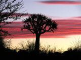 Потрясающие пейзажи / Фото из ЮАР