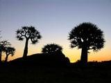 Самые красивые закаты в Африке / Фото из ЮАР