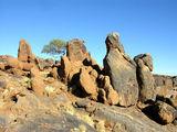 По берегам смотреть нечего / Фото из ЮАР