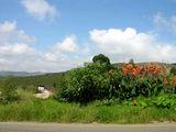 На следующий день / Фото из Свазиленда