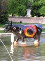 Швейцария – страна коров / Фото из Швейцарии